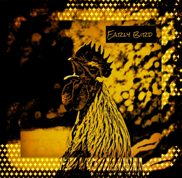 Early Bird (Artwork)